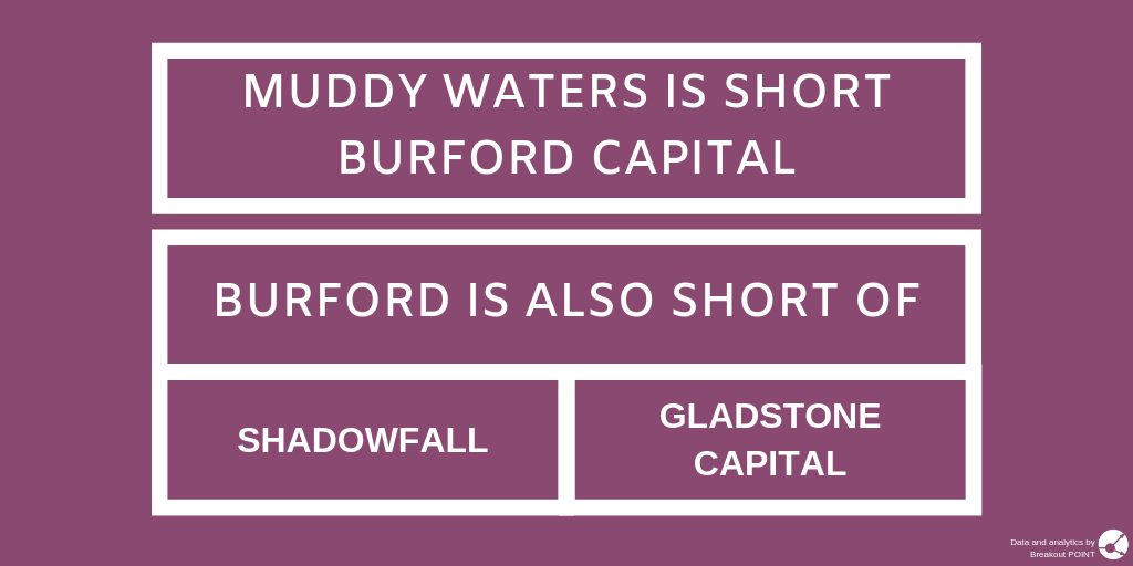 New Burford Capital Short by Muddy Waters